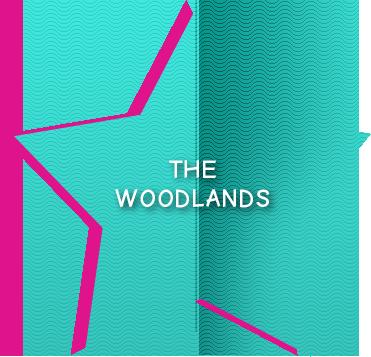 Woodlands - Jenna D'Amico